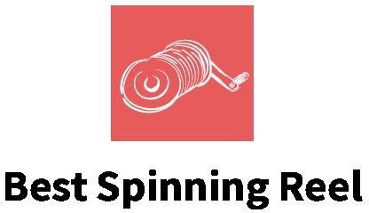 Best Spinning Reel